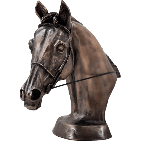 Eventer's Horse Head Cold Cast Bronze Sculpture